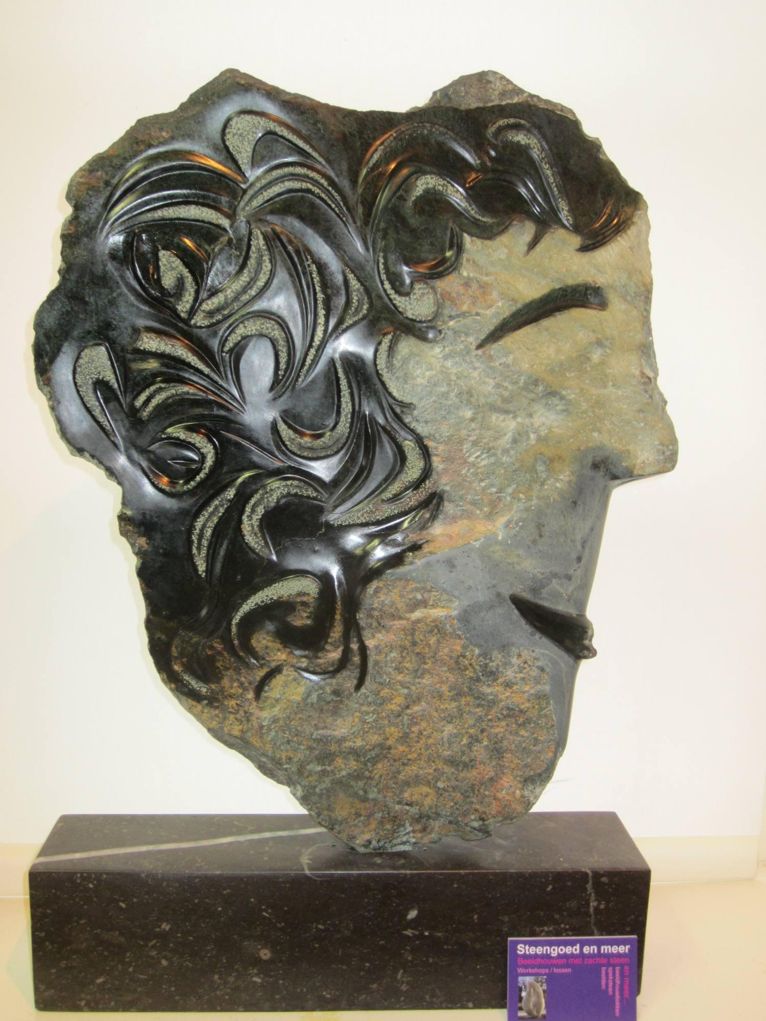Krullen_Aziatische serpentijn 40 cm, platte steen